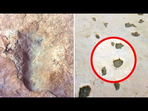 Dinosaur Tracks & Human Footprint Found Together? Did Dinosaurs & Humans Coexist?
