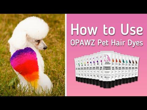 opawz pet hair dye rainbow dog