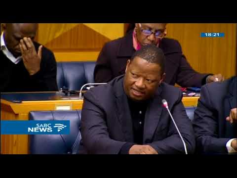 Secretary to Parliament, Gengezi Mgidlana faces disciplinary action
