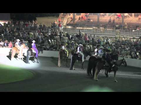tennessee walking horse wgc Black week results 2010 on novice walking horses wgc personal thoughts concerning saving the tennessee walking horse from the persistent and.