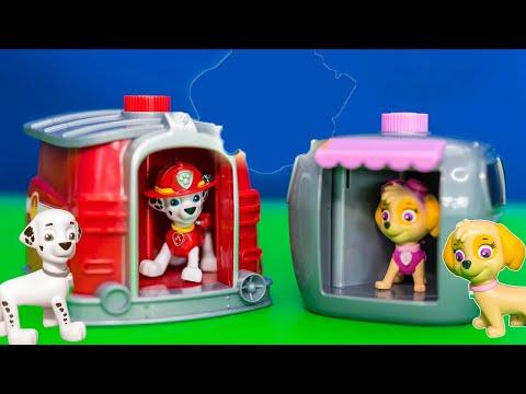 PAW PATROL Nickelodeon Paw Patrol Marshal and Skye Pup to Hero Funny Kids Toys Video