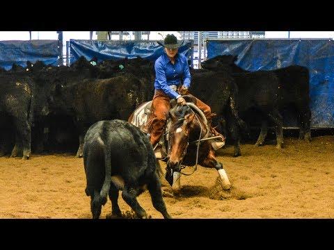 Darling Downs Futurity Show Non Pro Classic Challenge Final   Jacqueline Graham riding Dora Rey