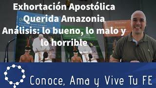 📗 Exhortación Apostólica Querida Amazonia ✝️ Lo bueno, lo malo y lo horrible 😪