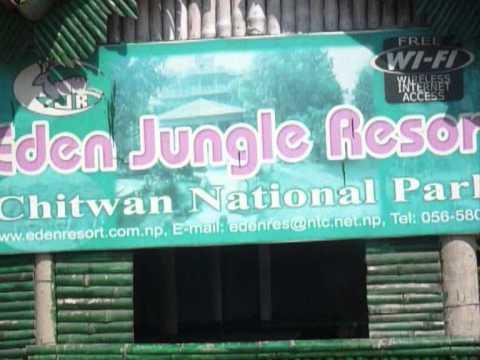 Chitwan | Elephant Safari | Mahendra Cave, Nepal