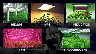 Gambar cover Choosing a Grow Light - Things to think about