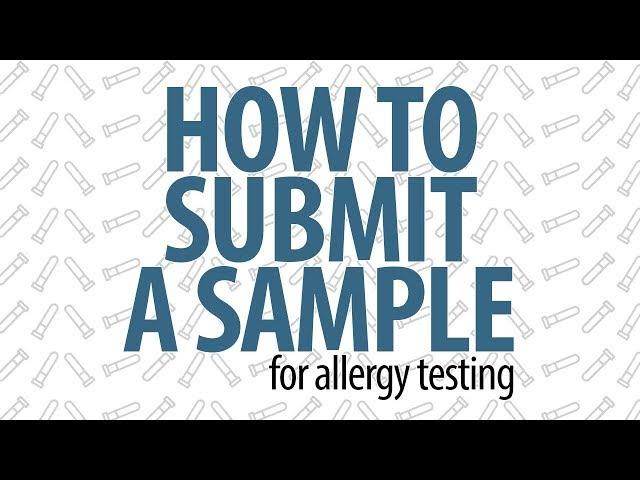 How Veterinarians Can Run an Allergy Test