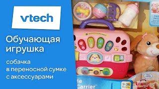 Навчальна іграшка для малят - Собачка у переносній сумці, Vtech. Огляд від Toyexpress