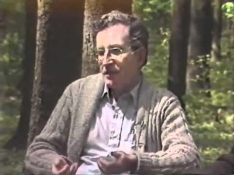 Chomsky explains Cold War in 5 min