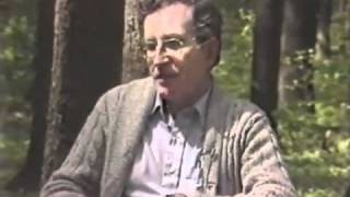 Chomsky explains Cold War in 5 min