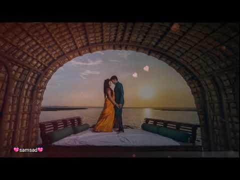 Anbe Anbe Nee En Pillai Song💘Whatsapp Status Tamil Love Song