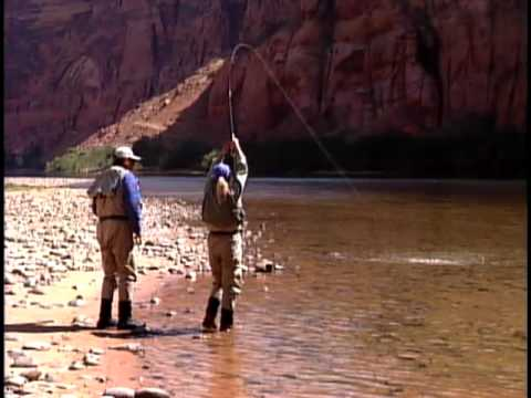 Lees ferry colorado river fly fishing youtube for Colorado river fly fishing