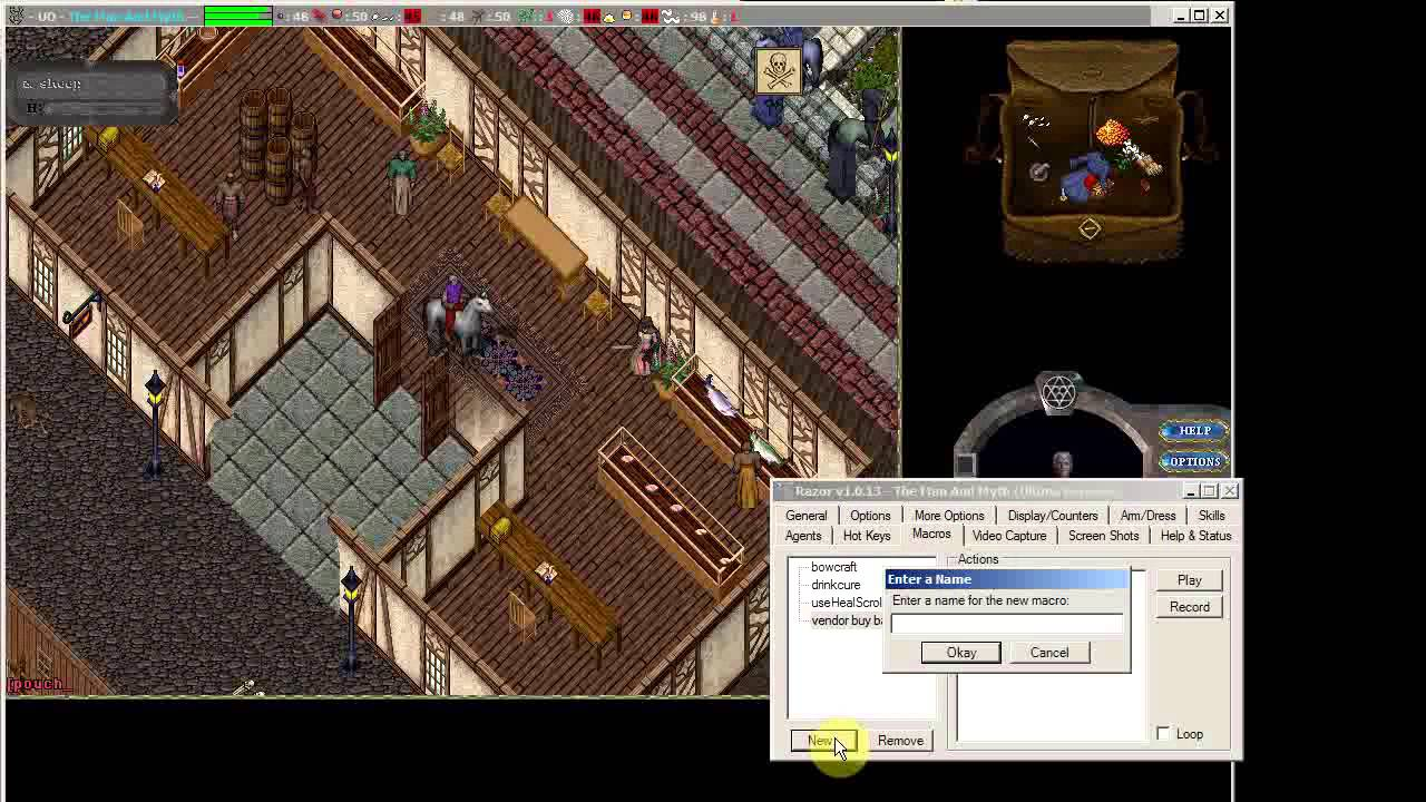 Ultima Online: COMPREHENSIVE Razor Tutorial (and More!)
