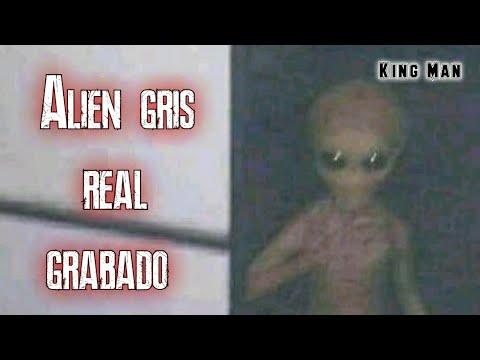 Extraterrestre gris auténtico grabado por un hombre escondido en una casa de EEUU