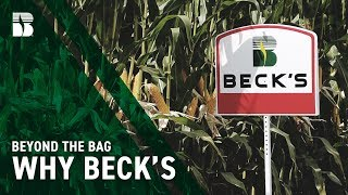 Why Beck's | Beck's Beyond The Bag
