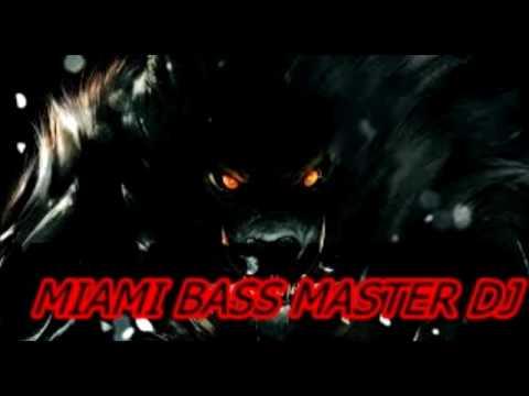 MIAMI BASS MASTER DJ