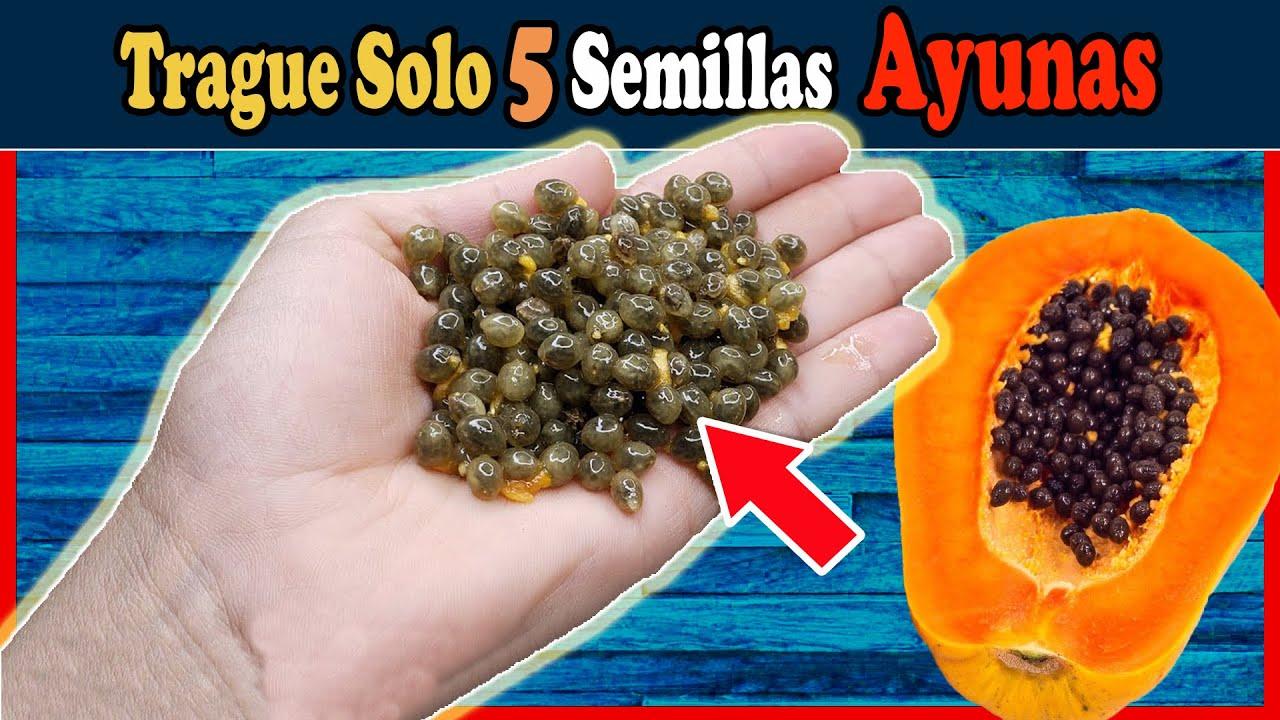 Trague 5 semillas de papaya en ayunas y luego me lo agradecerás