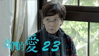 我們的愛   For My Love 23【未刪減版】(靳東、潘虹、童蕾等主演)