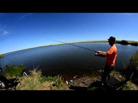 видео фидерная рыбная ловля  возьми метод
