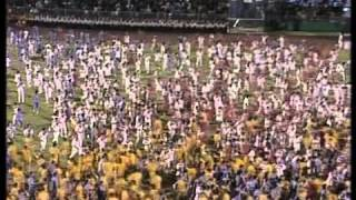 Dan mladosti 1984 Divlje jagode  Carobnjaci