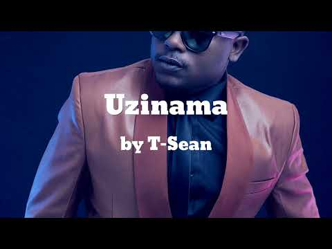 Uzinama ft Jae Cash - T-Sean