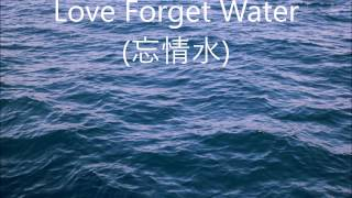 忘情水 (Love Forget Water) - 劉德華 (Andy Lau) - English lyrics