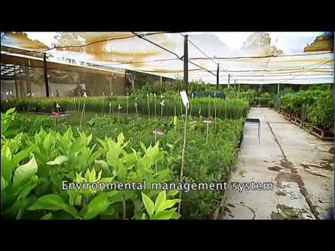 nursery production farm management