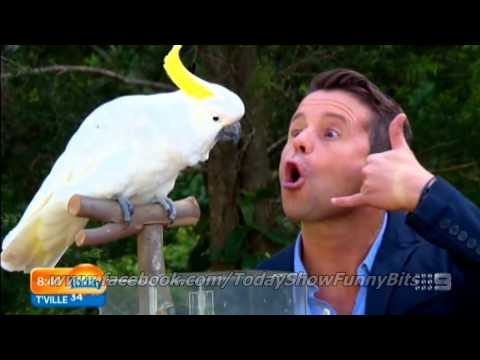 Today Show Funny Bits Part 82. Stevie: A Change in the Weather!