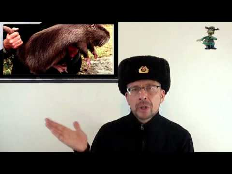 1. Welcome To Ushanka Show! My Life In The USSR