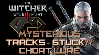 Witcher 3 - Mysterious Tracks - Stuck? Pour The Bait Around the Hill!