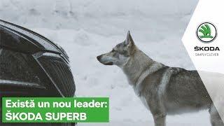 Faceți cunoștință cu noul leader: SKODA SUPERB!