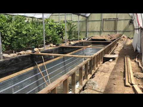 #1 - DIY Wood Frame Lap Pool (Rainwater Tank/Heat Sink) - 40' x 7' x 6' Deep in the Greenhouse