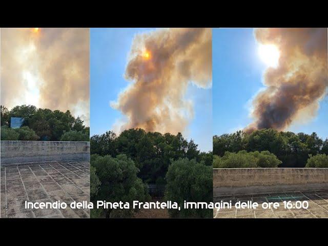 Grottaglie2021 - Ferragosto di fuoco, distrutta la Pineta Frantella