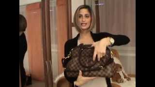 My Louis Vuitton Handbag Collection 2013