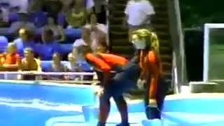 Attack of trainer Seaworld 2004