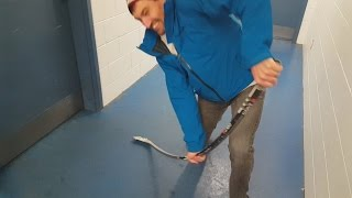 One of Coach Jeremy's most viewed videos: This stick won't break!