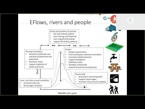 IFC Sustainability Webinar: Good Practice on Environmental Flows for Hydropower Projects