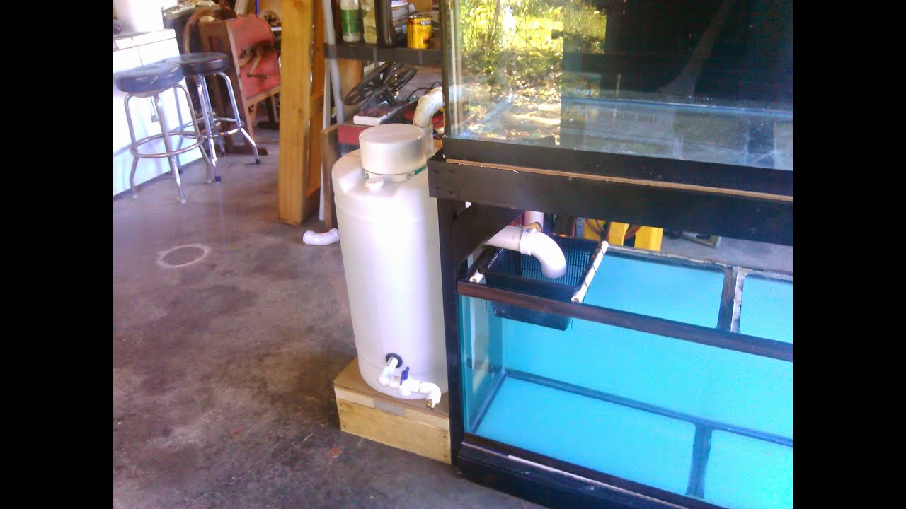 New 75g Build Diy Pvc Aquarium Overflow Coast To Coast