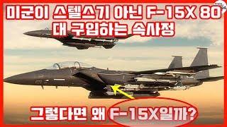 미군이 스텔스기 아닌 F-15X 80대 구입하는 속사정..그렇다면 왜 F-15X일까?