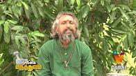 Mooligai Maruthuvam சர்க்கரை நோய்யை குணப்படுத்தும் எளிய முறை மருத்துவம்