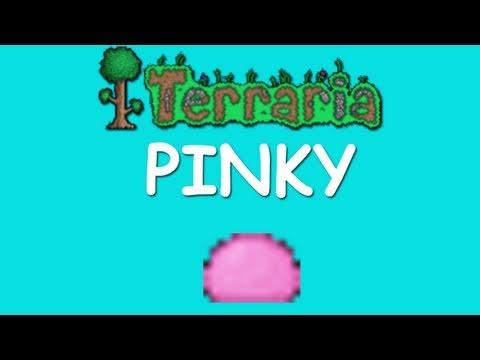 Terraria - Pinky