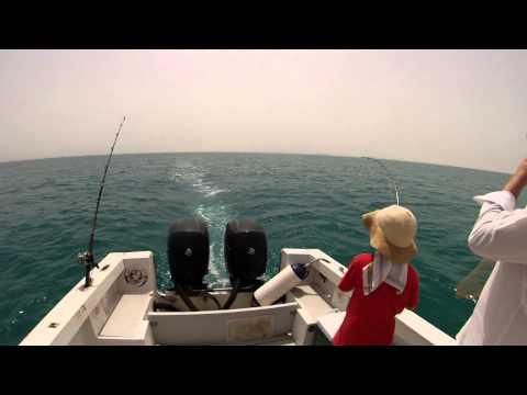 Queen fish on troll Qatar, Doha