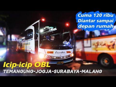 Mau ke Malang naik OBL, tapi kok malah.... | Cuma 120 ribu, diantar sampai rumah!