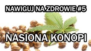 Nasiona konopi - NAWIGUJ NA ZDROWIE #6
