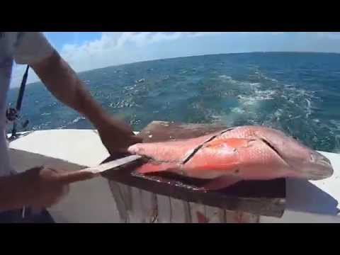 Cancun Mexico Saltwater Sea Fishing!