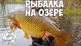Рыбалка на озере - Русская Рыбалка 4/Russian Fishing 4