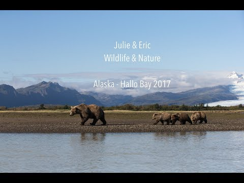 Julie & Eric Wildlife & Nature  - Alaska 2017