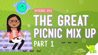 The Great Picnic Mix Up: Crash Course Kids #19.1