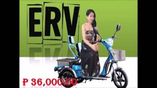 Golden Butterfly 2  -  TaiLG/NWOW e-bike