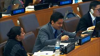 28. Jun granted Special Consultative Status with the United Nations!