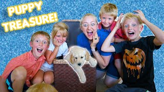 Puppy Treasure Hunt! The Beach House Get's A Dog!